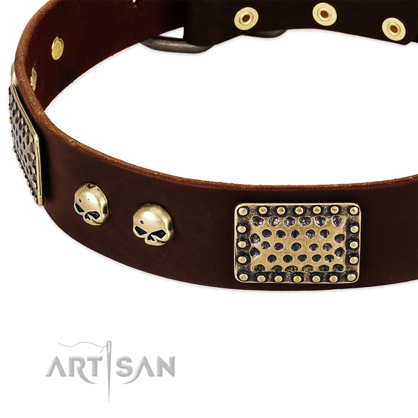 Rust resistant traditional buckle on leather dog collar for your canine