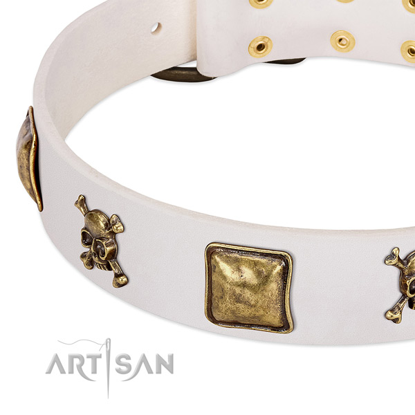 Exquisite leather dog collar with corrosion proof studs