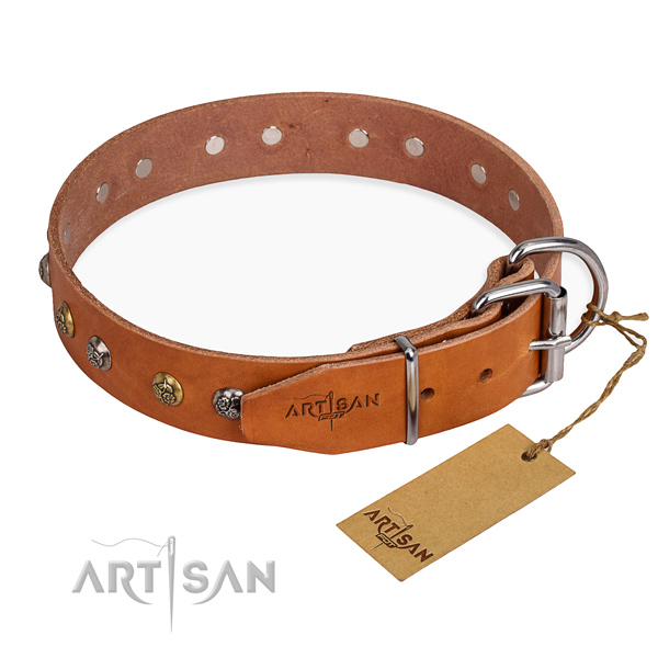 Leather dog collar with fashionable corrosion resistant embellishments