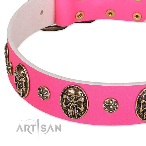 Adjustable dog collar handmade for your lovely four-legged friend