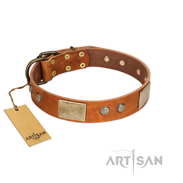 Adjustable genuine leather dog collar for everyday walking your dog