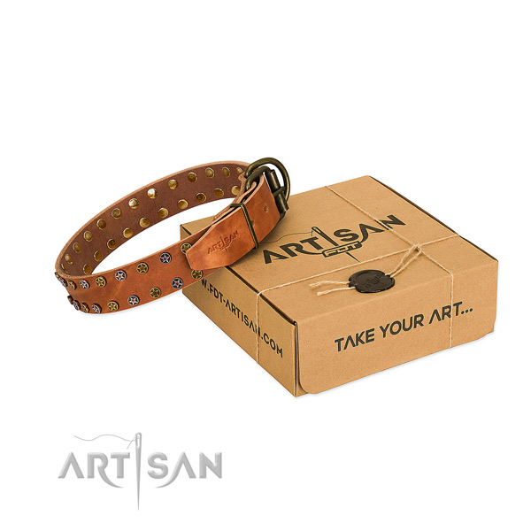 Everyday walking soft to touch leather dog collar with adornments