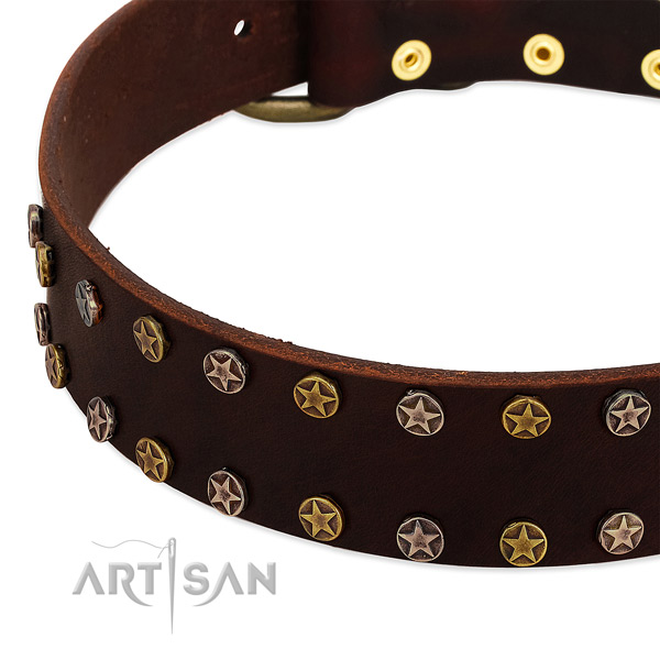 Everyday use natural leather dog collar with stylish design studs