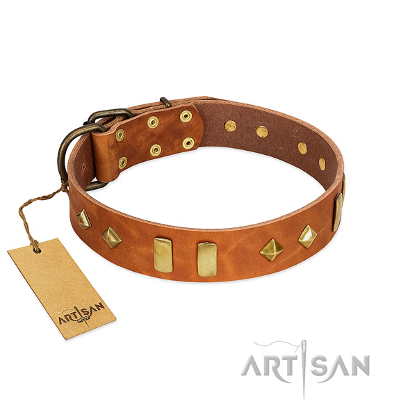 Easy wearing top rate natural leather dog collar with embellishments