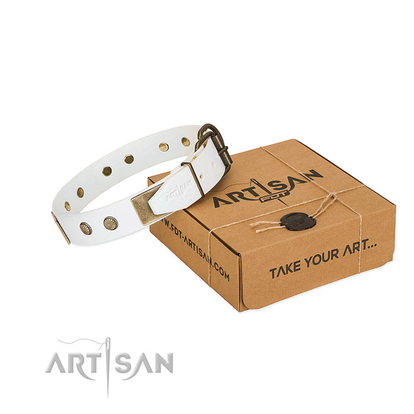 Rust-proof traditional buckle on dog collar for comfortable wearing