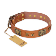 """Cosmic Traveller"" FDT Artisan Adorned Leather Siberian Husky Collar with Old Bronze-Plated Stars and Plates"