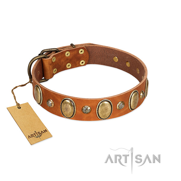 Full grain leather dog collar of top notch material with remarkable adornments