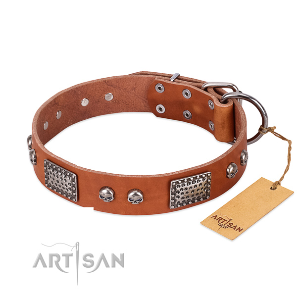 Easy to adjust full grain leather dog collar for basic training your dog