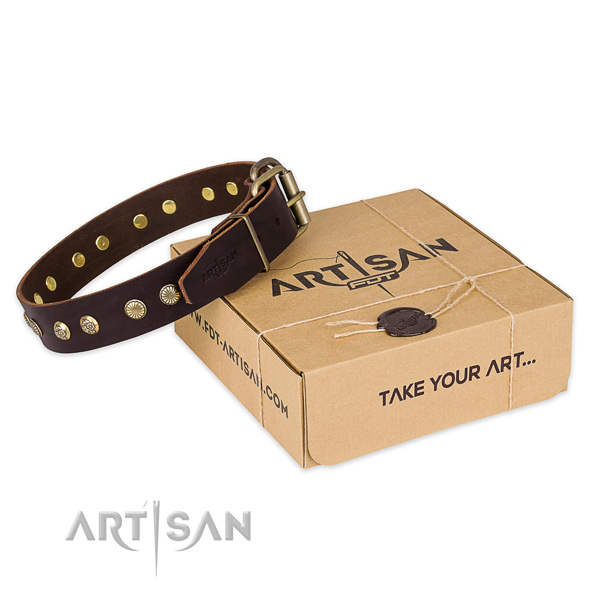 Strong buckle on full grain genuine leather collar for your impressive doggie