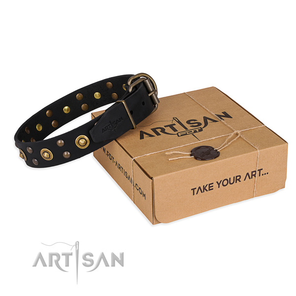 Strong buckle on leather collar for your handsome doggie