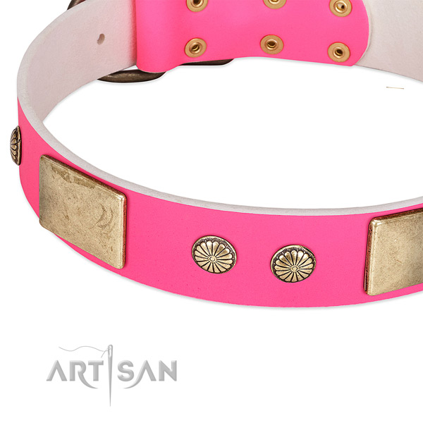 Strong adornments on natural leather dog collar for your pet