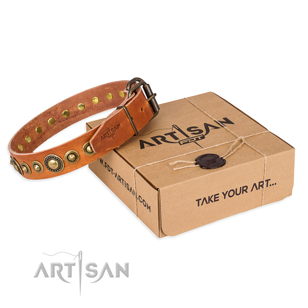Durable full grain leather dog collar created for fancy walking