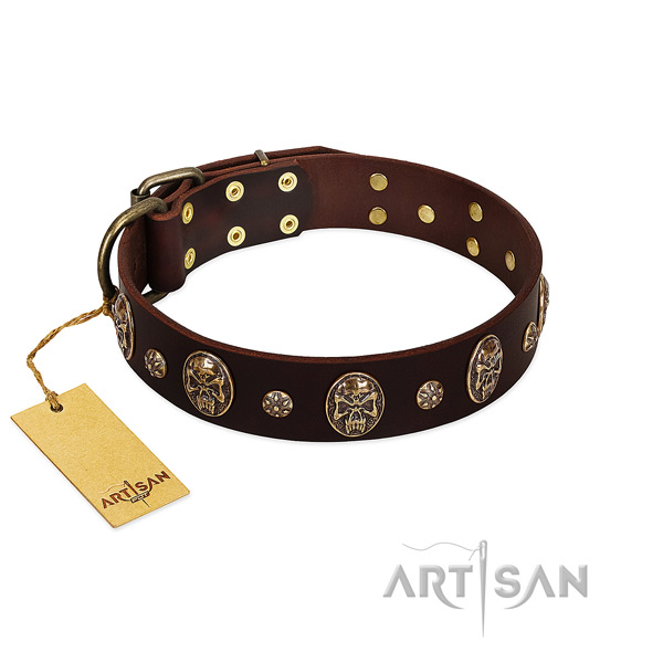 Top notch genuine leather collar for your doggie