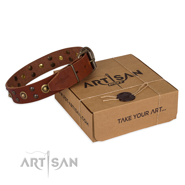 Strong fittings on genuine leather collar for your handsome canine