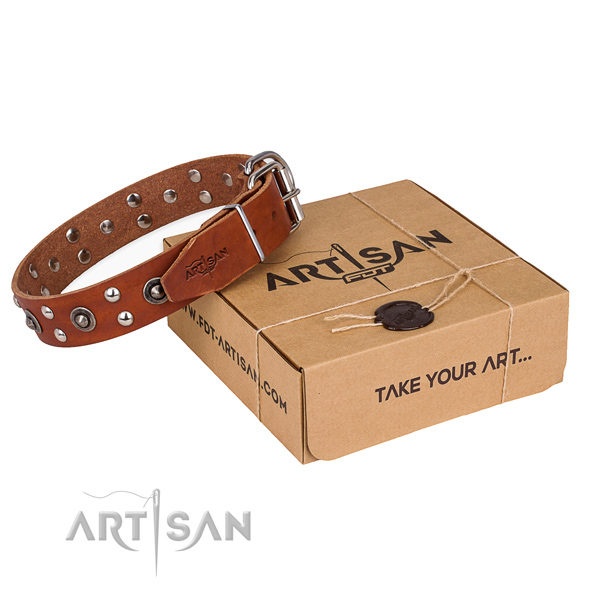 Durable buckle on full grain natural leather collar for your lovely pet