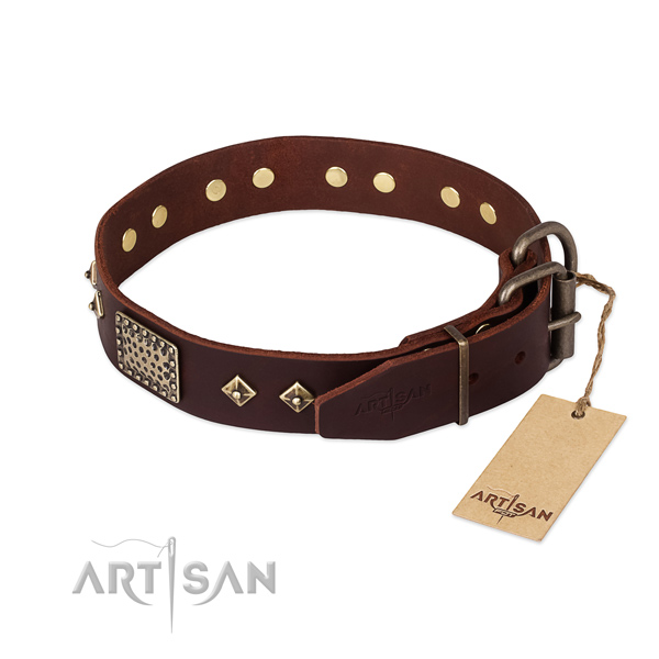 Full grain natural leather dog collar with reliable D-ring and embellishments