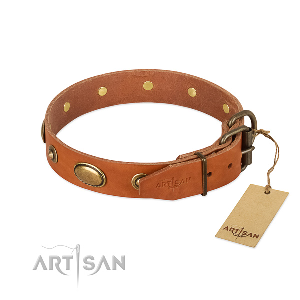 Rust-proof traditional buckle on full grain natural leather dog collar for your pet