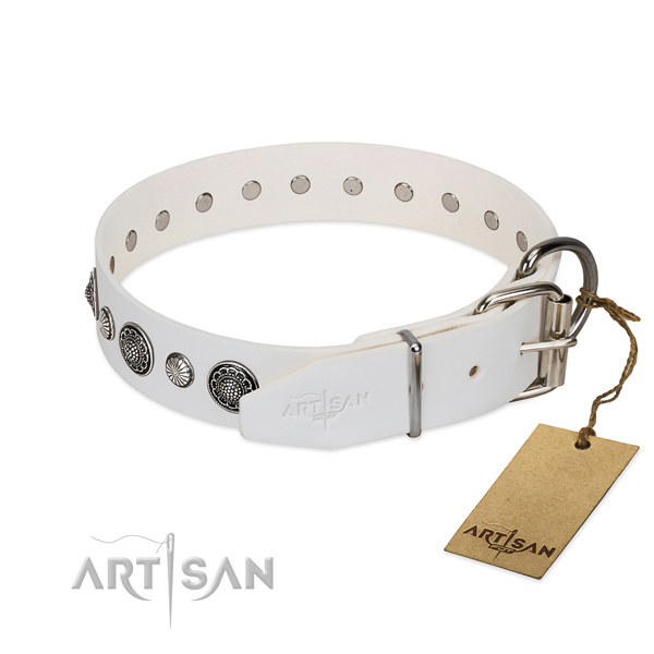 Gentle to touch full grain leather dog collar with rust-proof traditional buckle