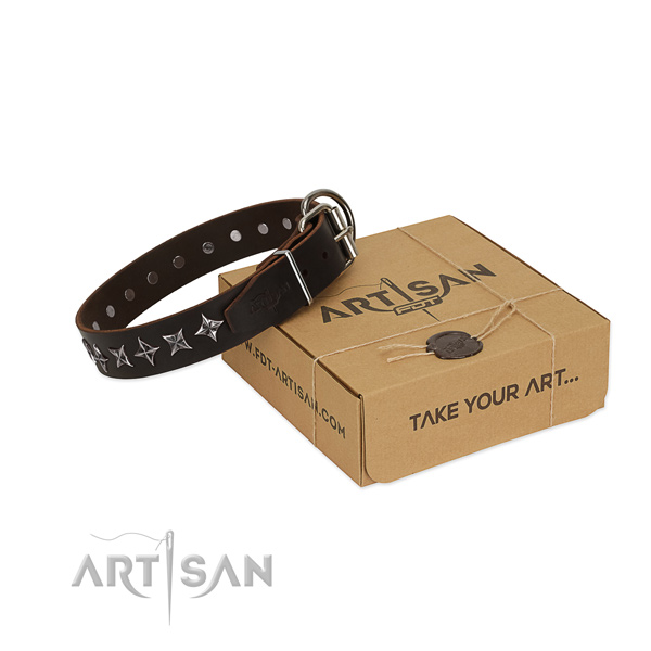 Comfortable wearing dog collar of reliable full grain natural leather with adornments