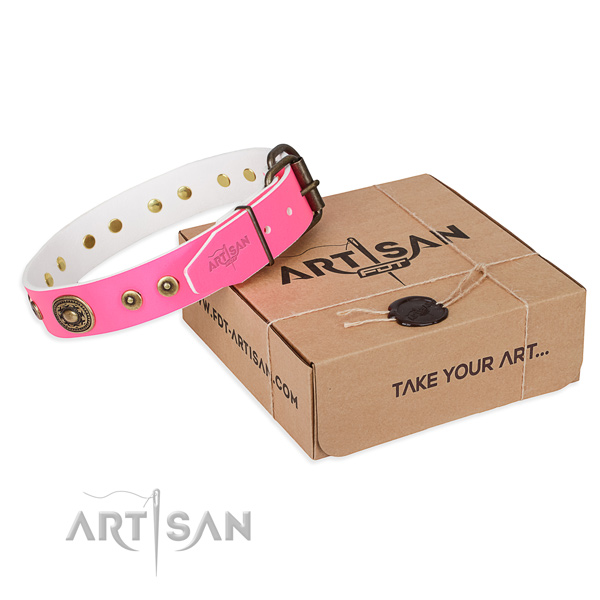 Genuine leather dog collar made of gentle to touch material with rust resistant hardware