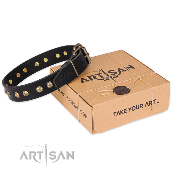 Rust-proof traditional buckle on genuine leather collar for your lovely pet