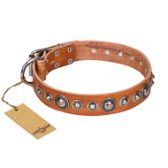 """Daily Chic"" FDT Artisan Tan Leather Siberian Husky Collar with Decorations"