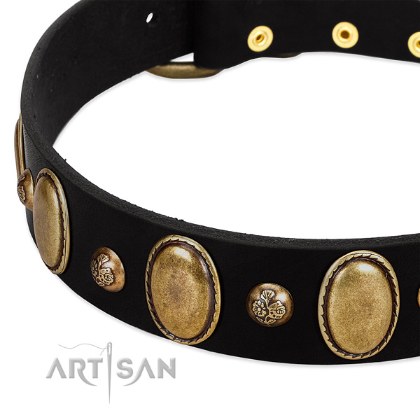 Full grain natural leather dog collar with unique embellishments