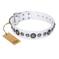 """Ice Age"" FDT Artisan White Studded Leather Siberian Husky Collar"