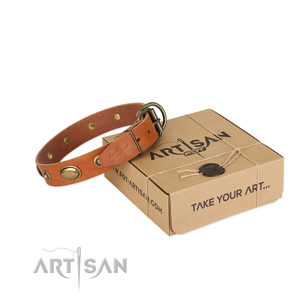 Rust resistant buckle on natural leather dog collar for your canine