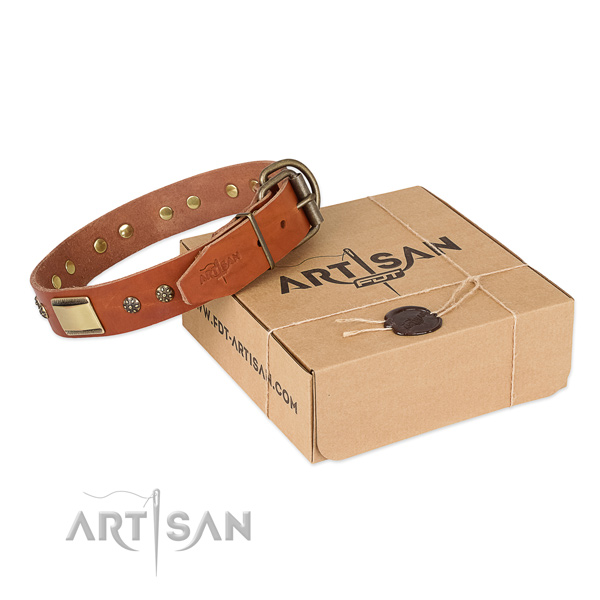 Trendy full grain genuine leather collar for your attractive pet