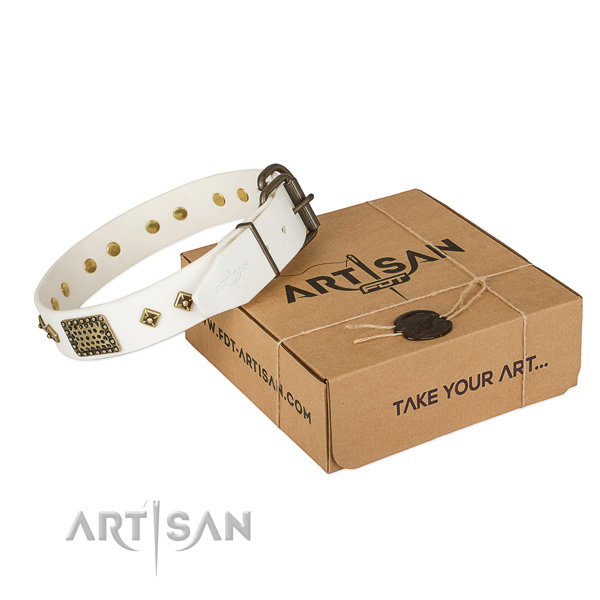 Handcrafted leather collar for your stylish doggie