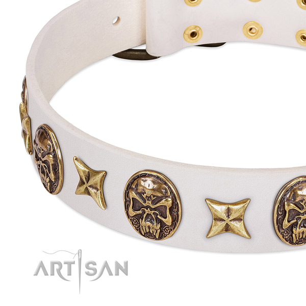 Stylish dog collar crafted for your stylish doggie