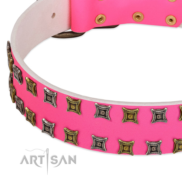 Natural leather dog collar with studs for your attractive four-legged friend