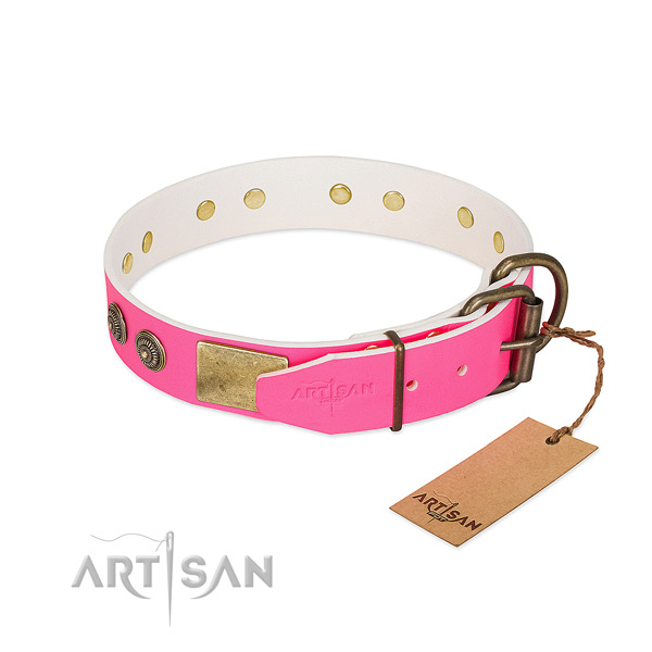 Rust-proof hardware on natural genuine leather collar for fancy walking your canine