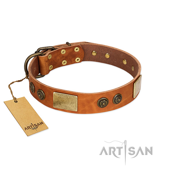 Remarkable full grain leather dog collar for comfortable wearing