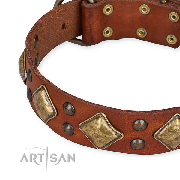 Natural leather collar with corrosion proof D-ring for your beautiful canine