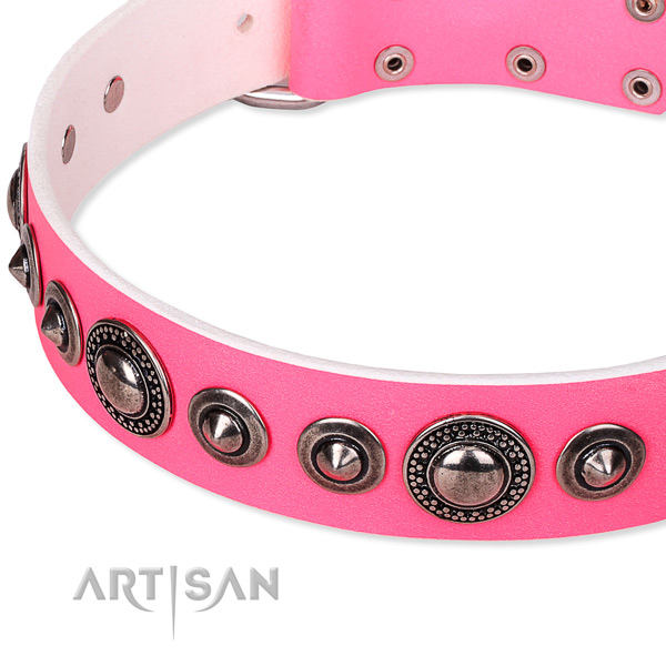 Comfy wearing studded dog collar of finest quality full grain natural leather