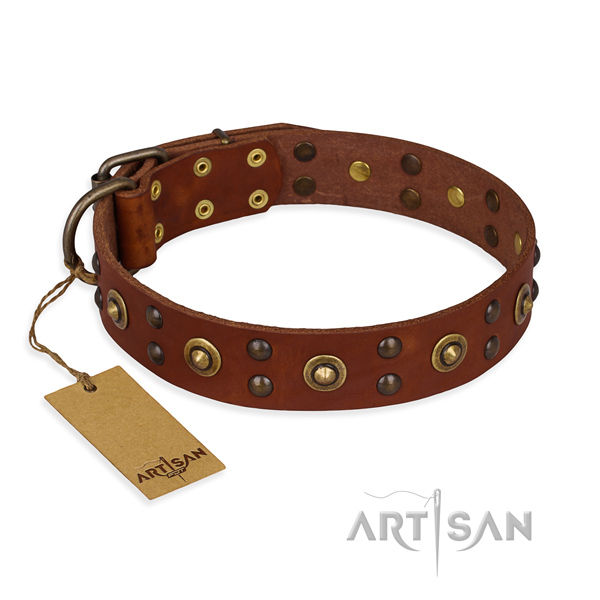 Handcrafted leather dog collar with corrosion resistant hardware