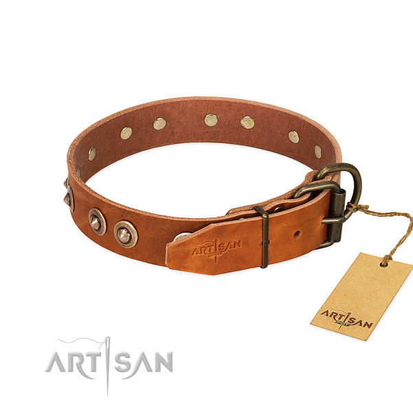 Rust-proof decorations on full grain genuine leather dog collar for your canine