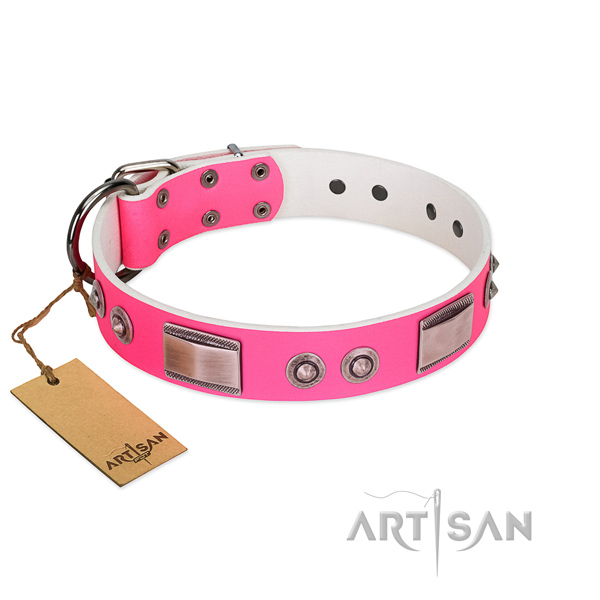 Comfortable full grain genuine leather collar with adornments for your doggie