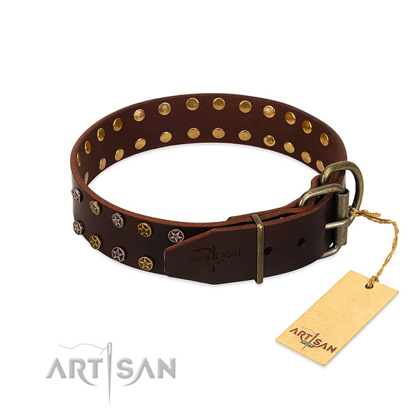 Daily use full grain leather dog collar with incredible studs