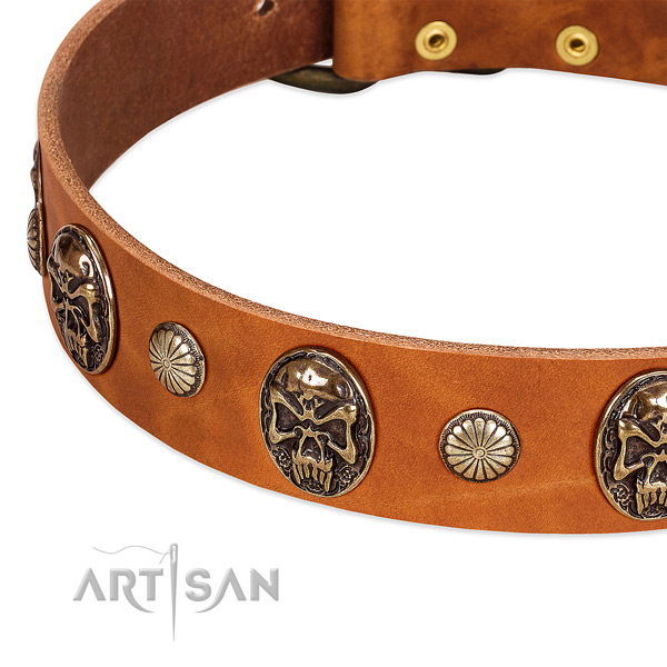 Strong studs on genuine leather dog collar for your dog