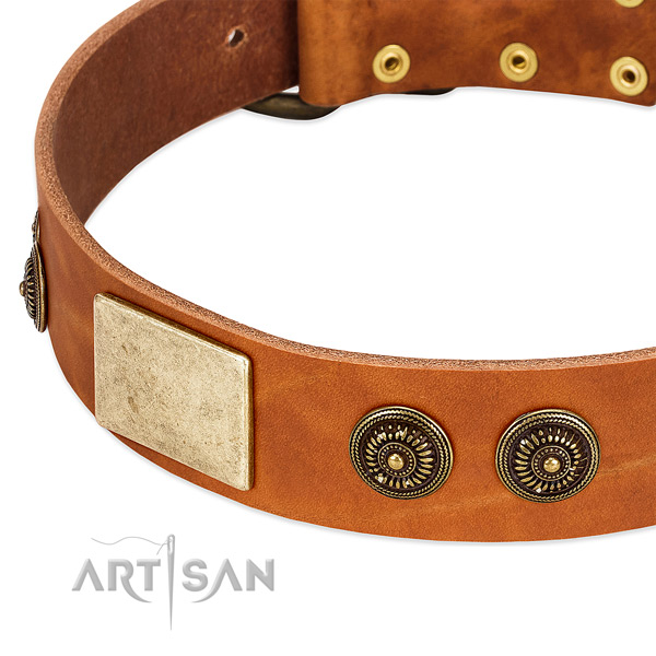 Top quality dog collar created for your beautiful dog