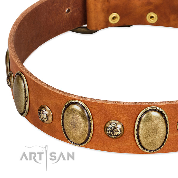 Full grain natural leather dog collar with stylish design decorations