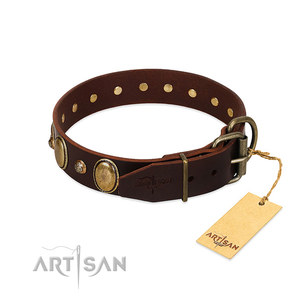 Rust-proof hardware on leather collar for basic training your four-legged friend