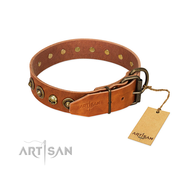 Full grain natural leather collar with awesome embellishments for your four-legged friend