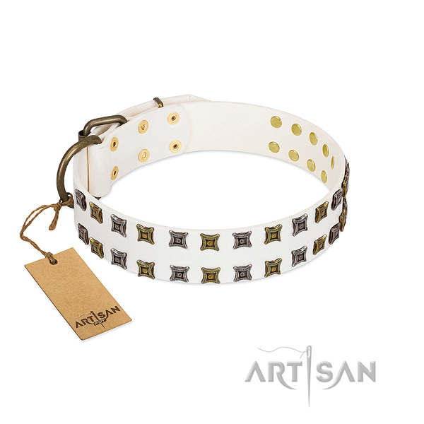 Soft to touch full grain genuine leather dog collar with studs for your dog