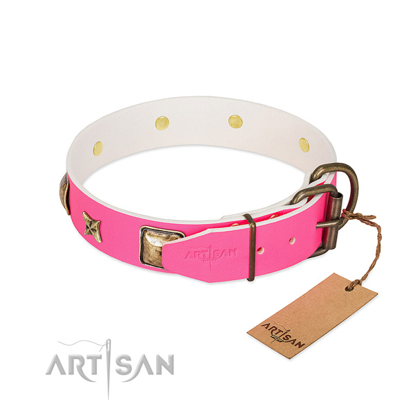 Corrosion proof buckle on full grain genuine leather collar for fancy walking your canine