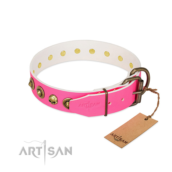 Full grain leather collar with exquisite embellishments for your four-legged friend