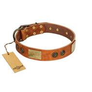 """Bronze Century"" FDT Artisan Tan Leather Siberian Husky Collar with Plates and Brooches with Cool Ornament"